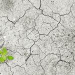 Impacto del Cambio Climático en América Latina y el Caribe